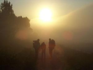 caminhar na neblina 2